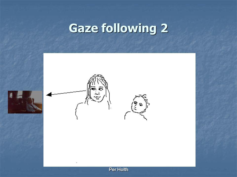 Gaze following 2 Per Holth