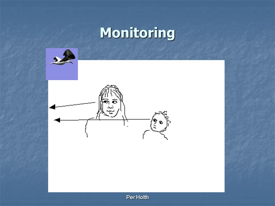 Monitoring Per Holth