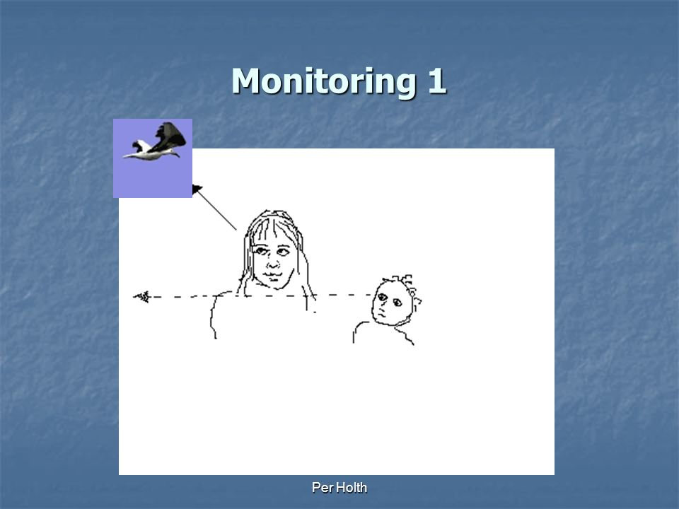 Monitoring 1 Per Holth