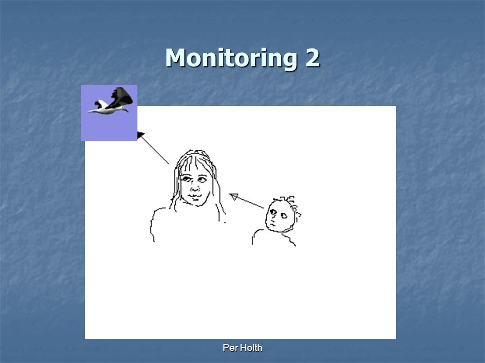 Monitoring 2 Per Holth