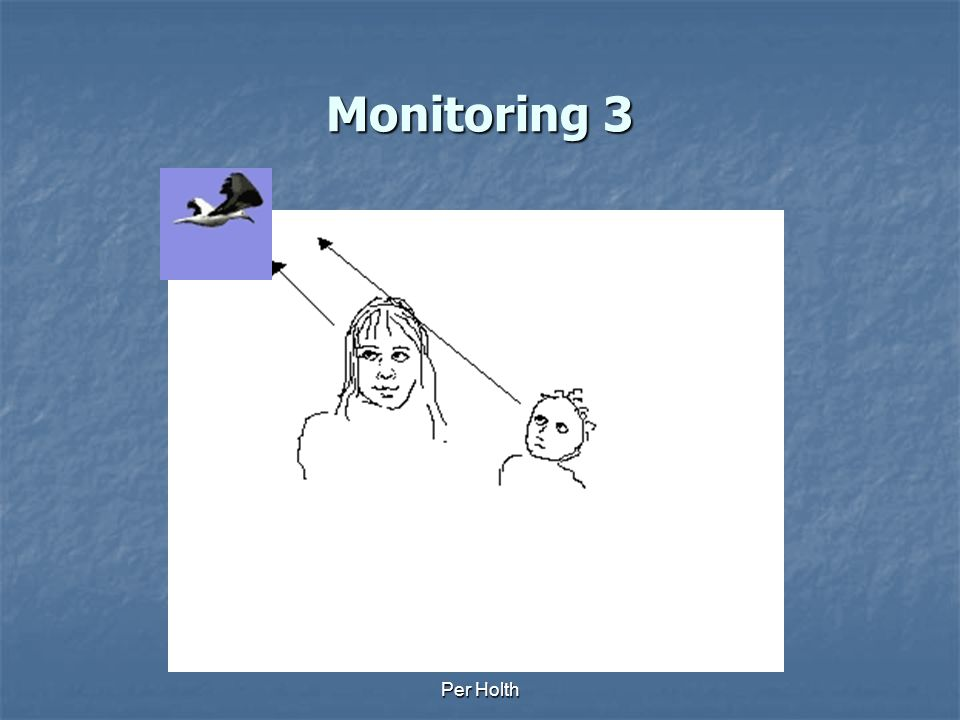 Monitoring 3 Per Holth