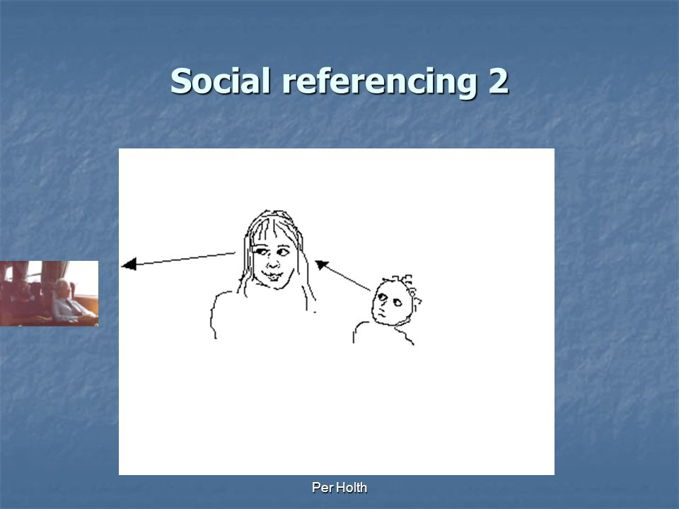 Social referencing 2 Per Holth
