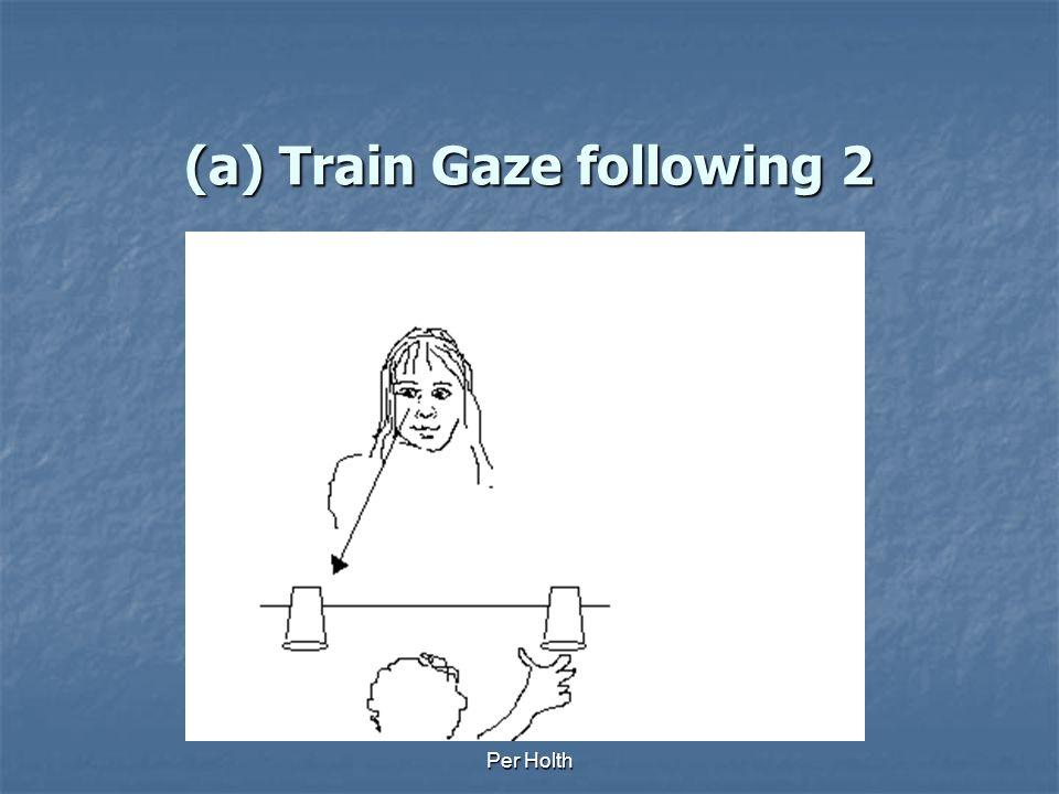 (a) Train Gaze following 2