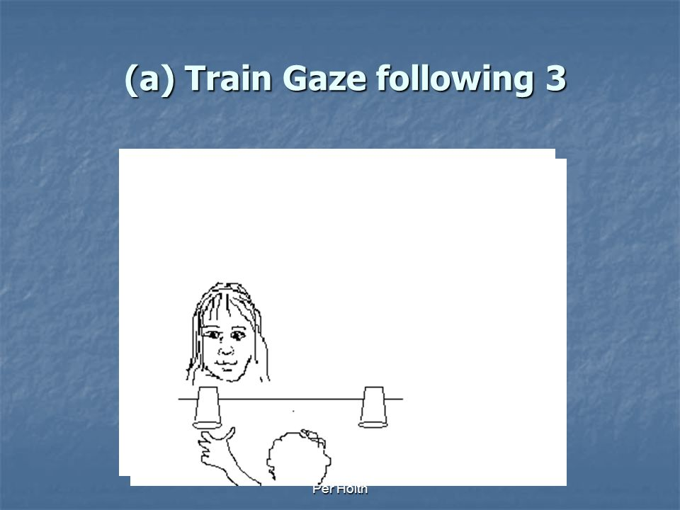 (a) Train Gaze following 3