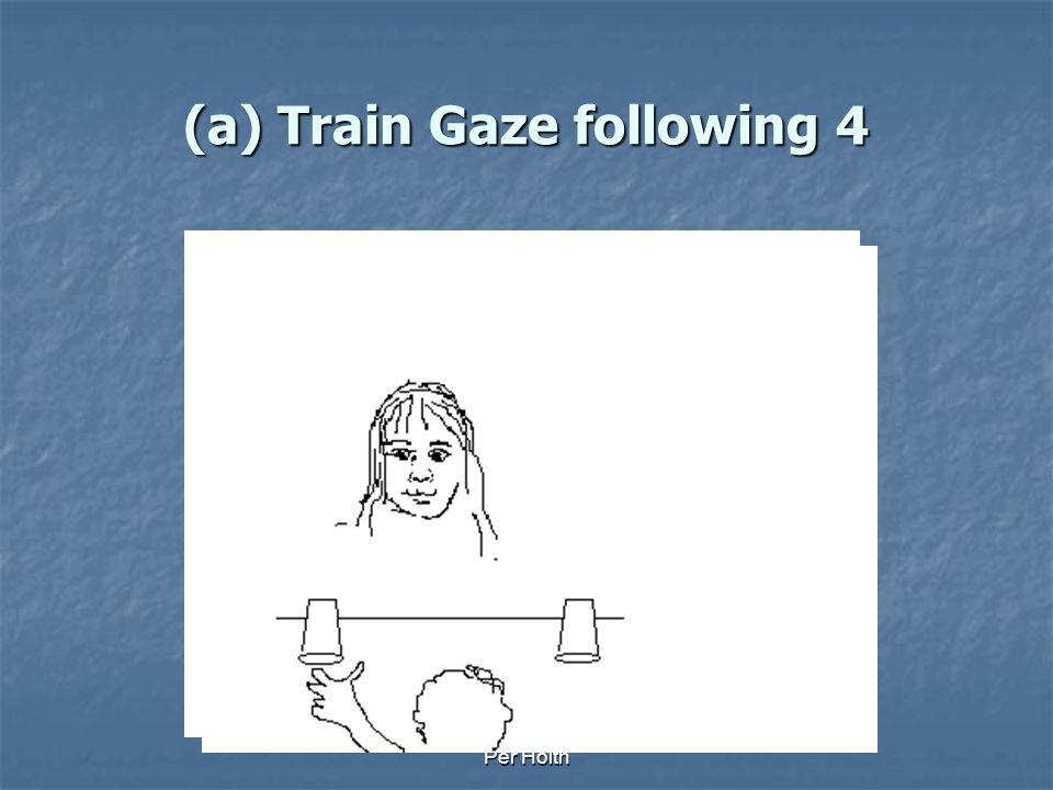 (a) Train Gaze following 4