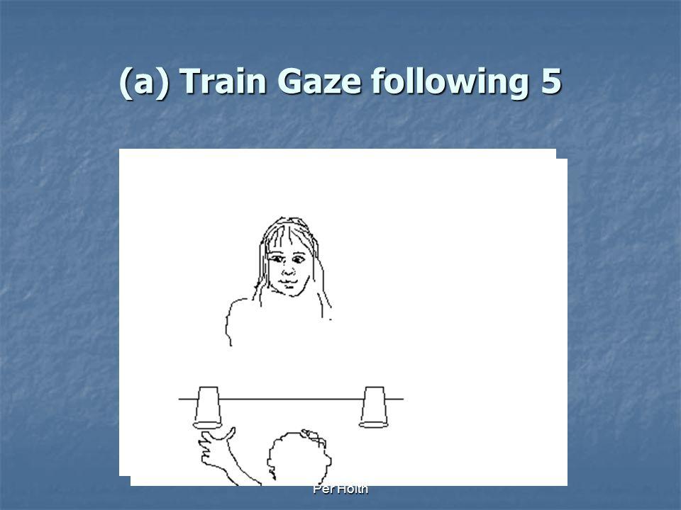 (a) Train Gaze following 5