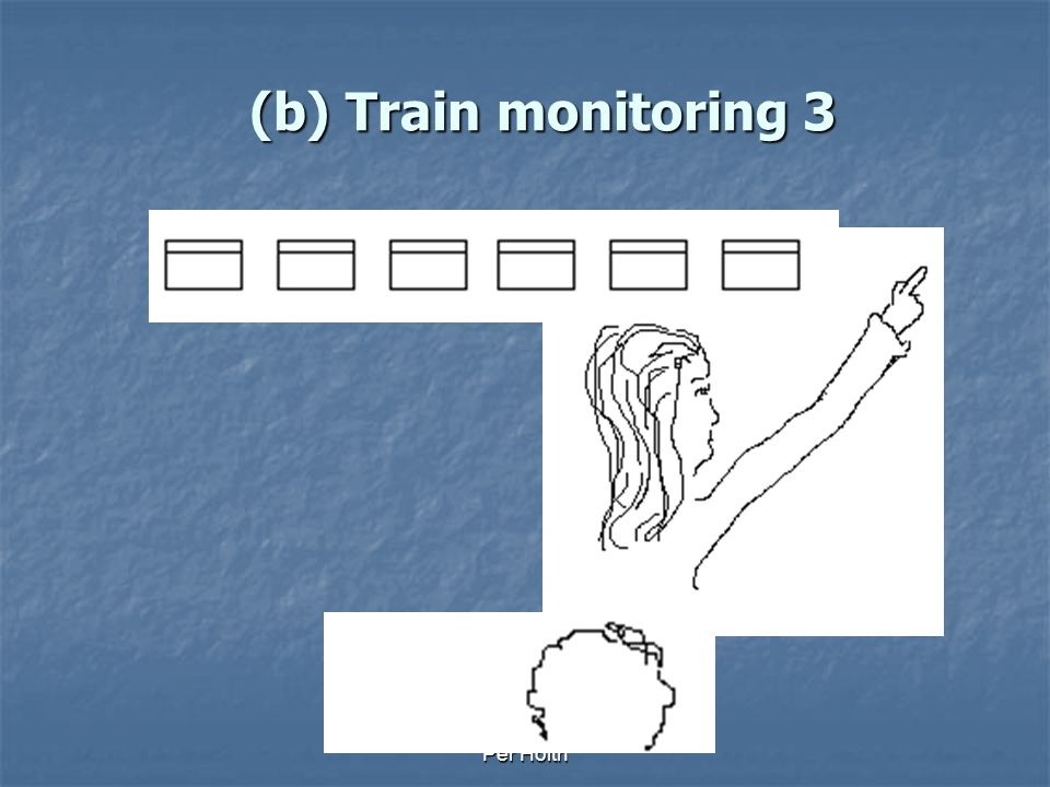 (b) Train monitoring 3 Per Holth