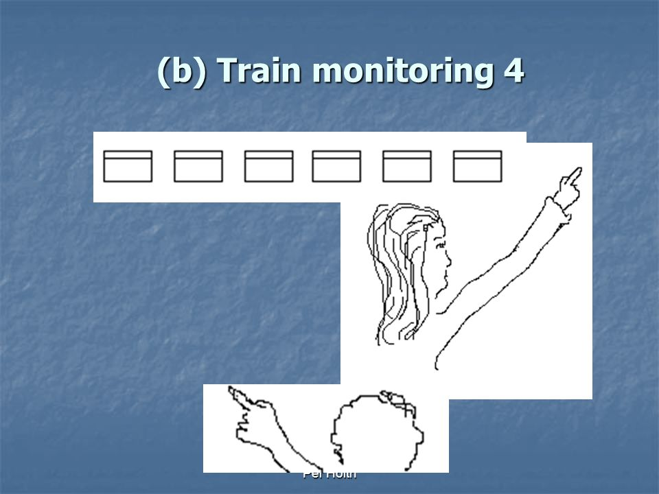 (b) Train monitoring 4 Per Holth