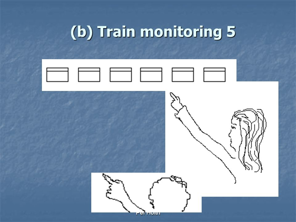 (b) Train monitoring 5 Per Holth