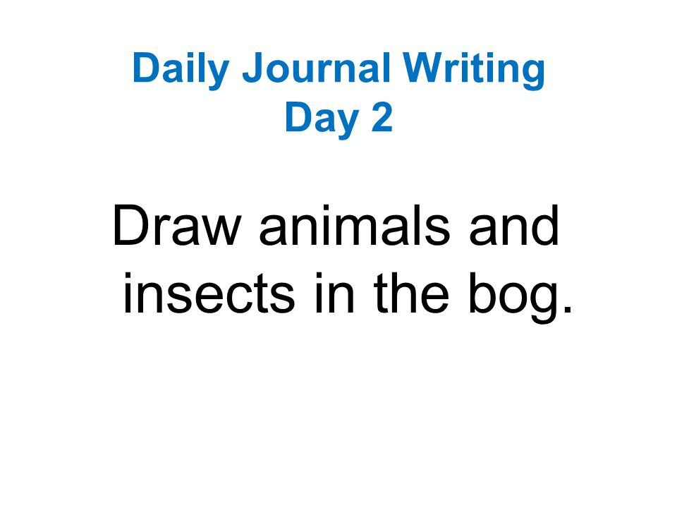 33 Journaling Ideas: What to Write About in a Daily Journal