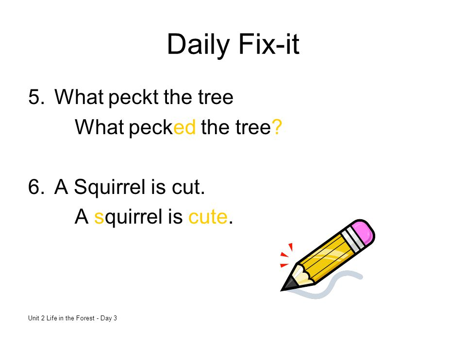 Daily Fix-it What peckt the tree What pecked the tree