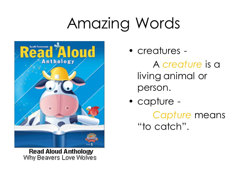 Amazing Words creatures - A creature is a living animal or person.