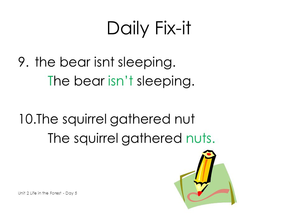 Daily Fix-it the bear isnt sleeping. The bear isn't sleeping.