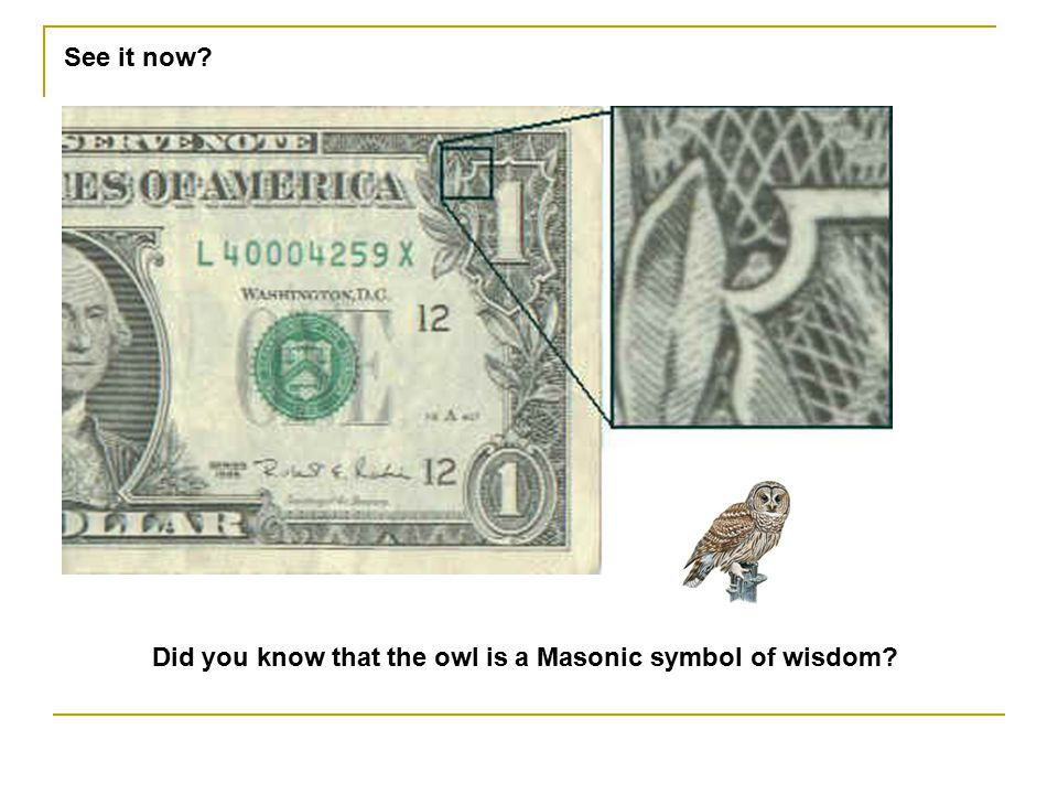 See it now Did you know that the owl is a Masonic symbol of wisdom