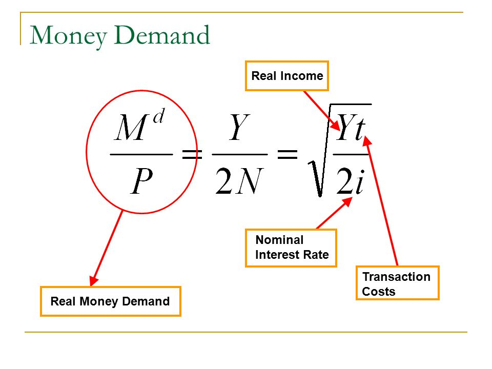 Money Demand Real Income Nominal Interest Rate Transaction Costs