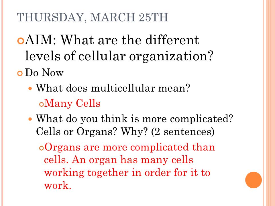 AIM: What are the different levels of cellular organization