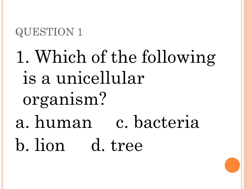 1. Which of the following is a unicellular organism