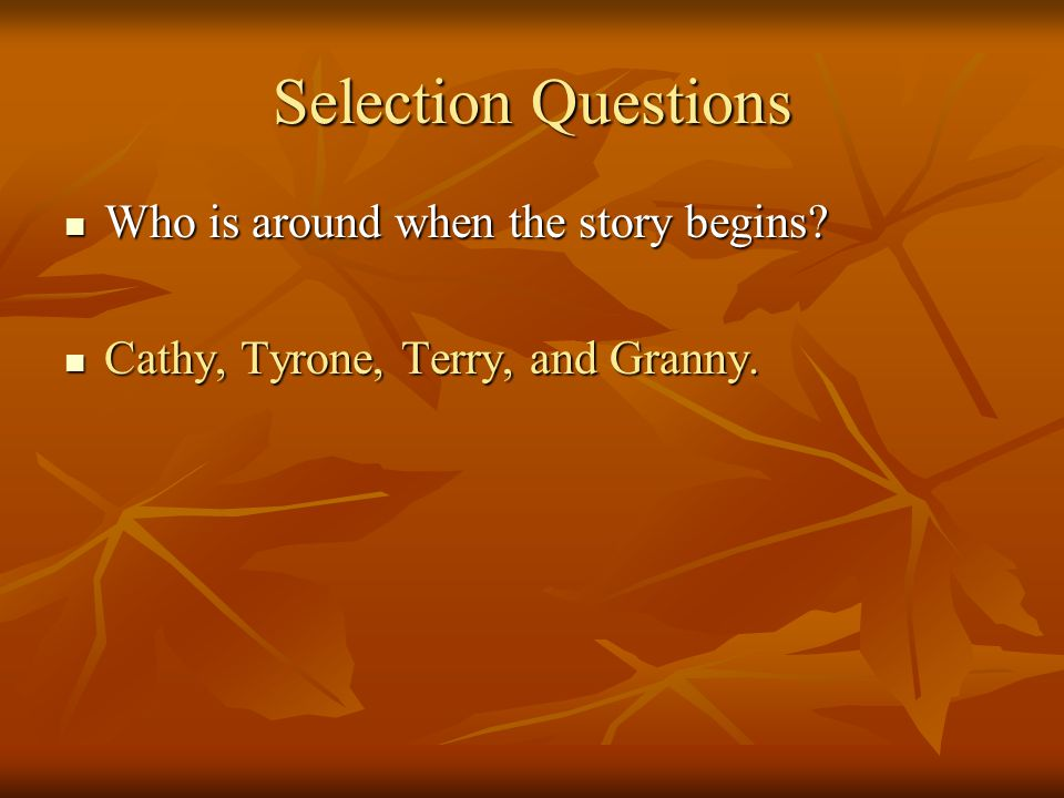 Selection Questions Who is around when the story begins
