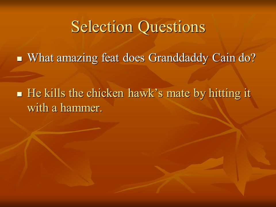 Selection Questions What amazing feat does Granddaddy Cain do