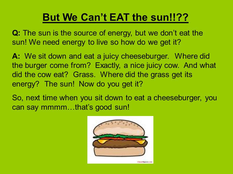 But We Can't EAT the sun!! Q: The sun is the source of energy, but we don't eat the sun! We need energy to live so how do we get it