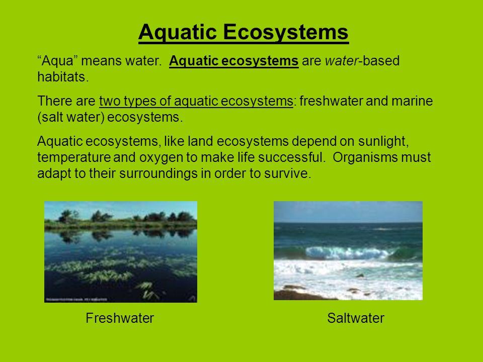 Aquatic Ecosystems Aqua means water. Aquatic ecosystems are water-based habitats.