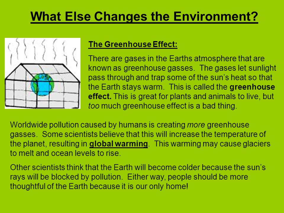 What Else Changes the Environment