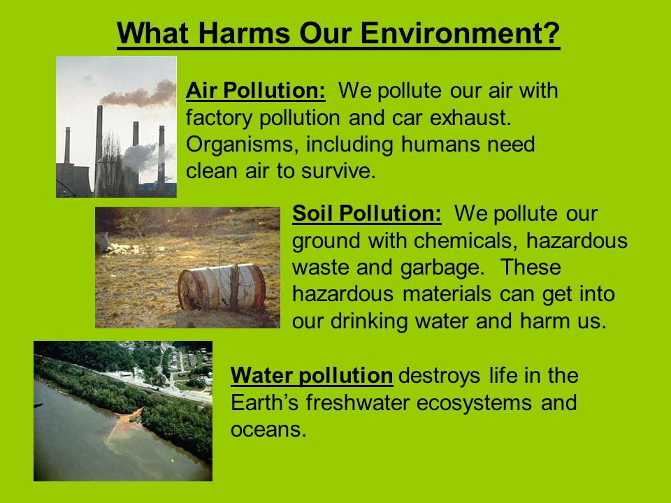 What Harms Our Environment