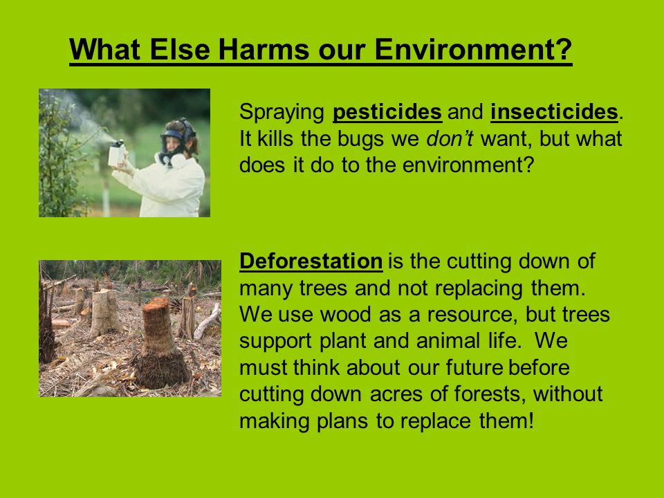 What Else Harms our Environment