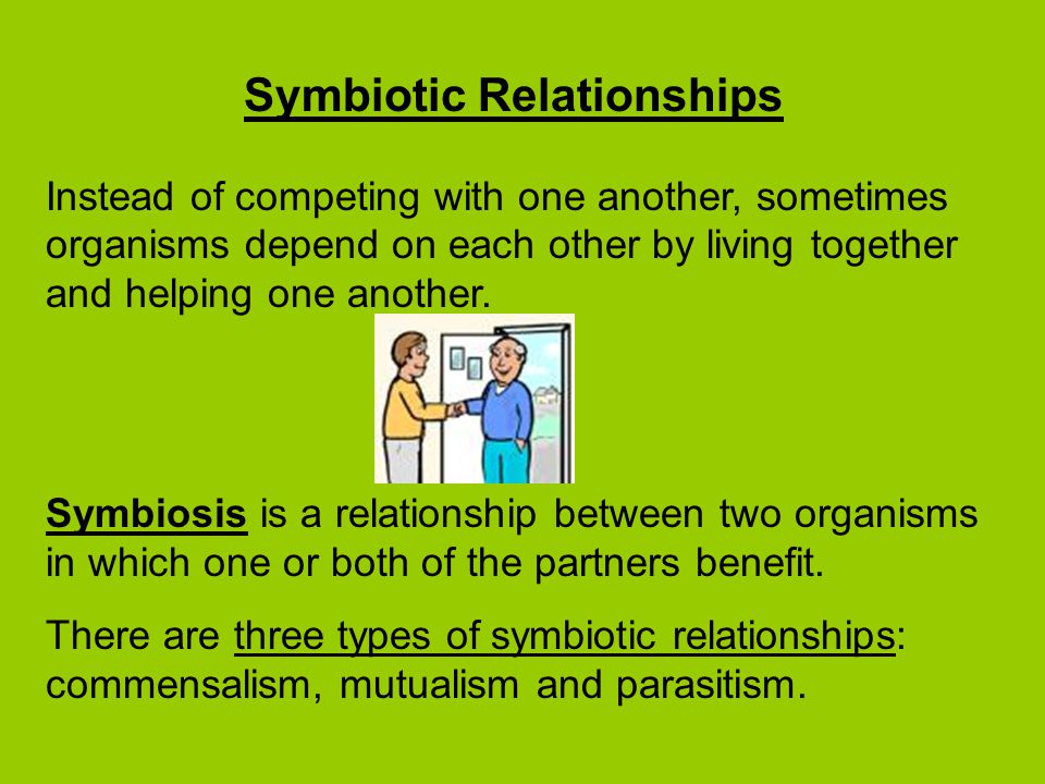 symbiotic relationship between two organisms in which both benefit