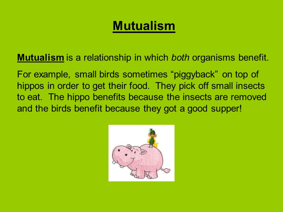Mutualism Mutualism is a relationship in which both organisms benefit.