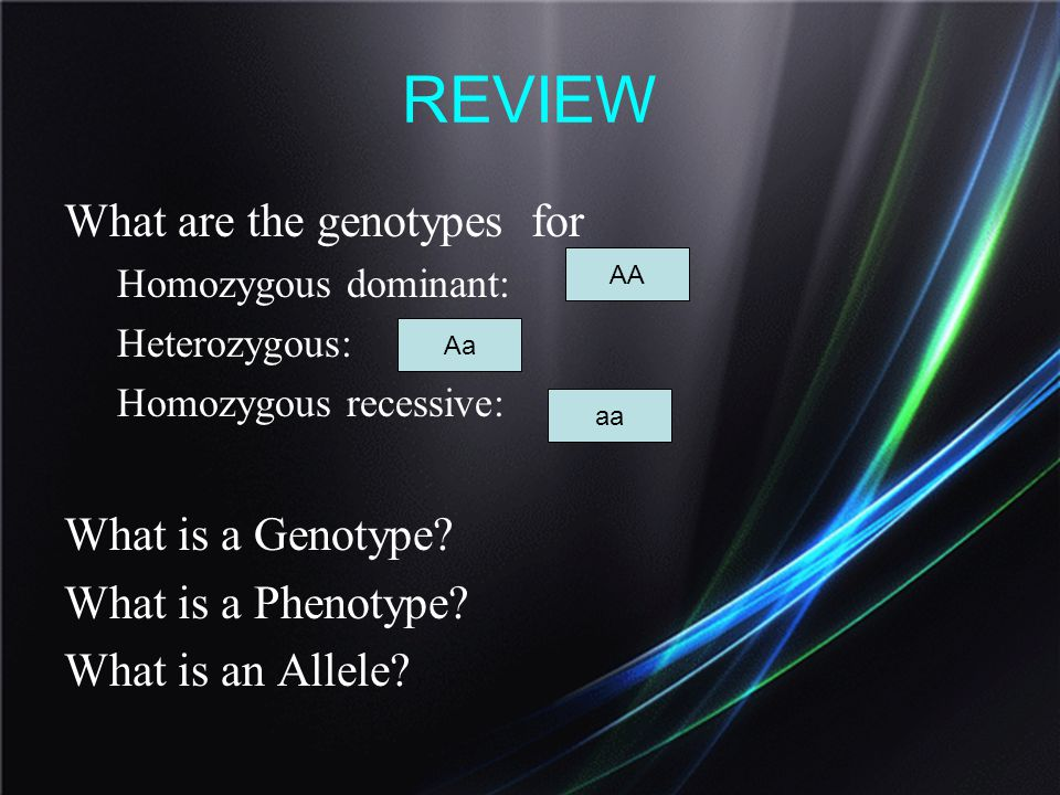 REVIEW What are the genotypes for What is a Genotype
