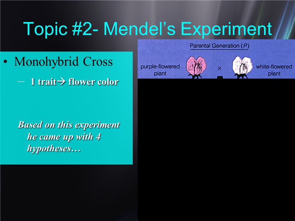 Topic #2- Mendel's Experiment