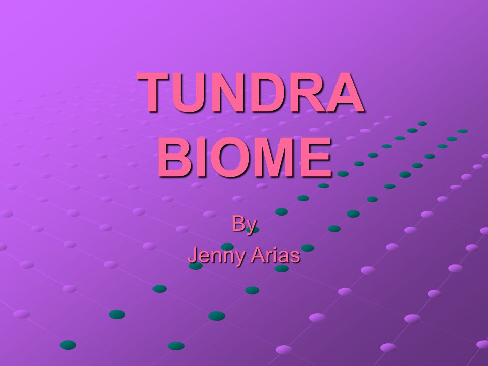TUNDRA BIOME By Jenny Arias
