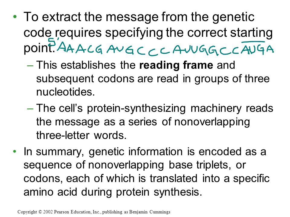 To extract the message from the genetic code requires specifying the correct starting point.