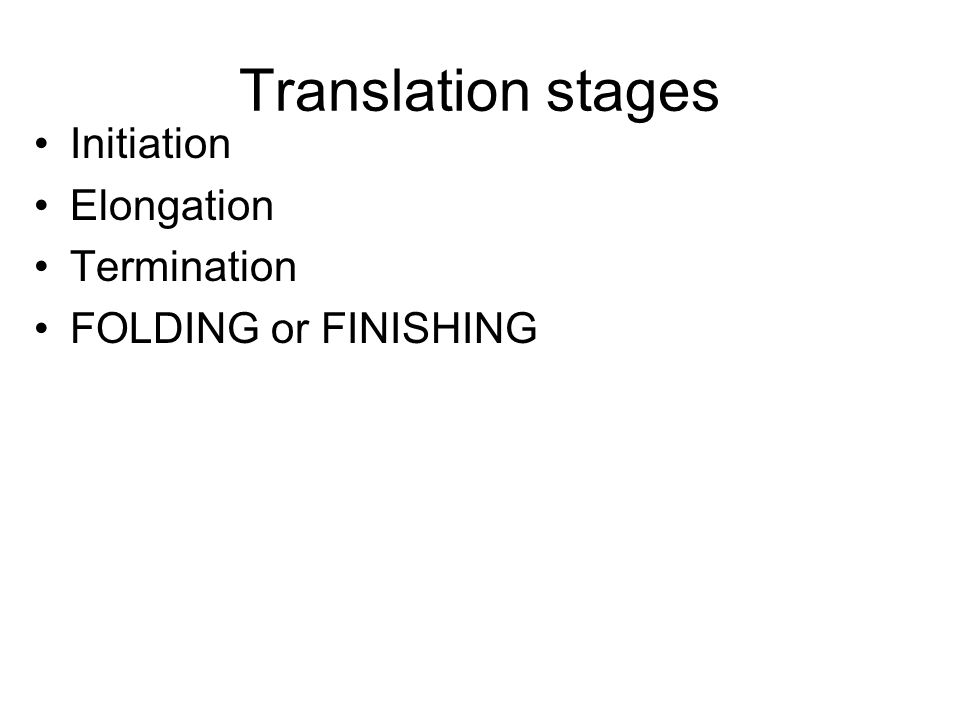 Translation stages Initiation Elongation Termination
