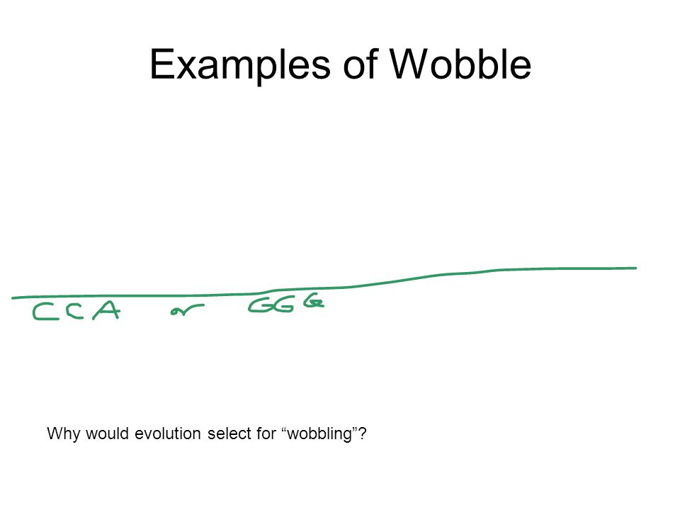Examples of Wobble Why would evolution select for wobbling