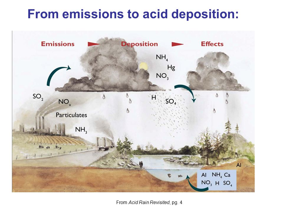 From emissions to acid deposition: