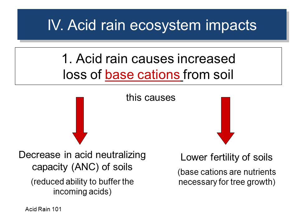 IV. Acid rain ecosystem impacts