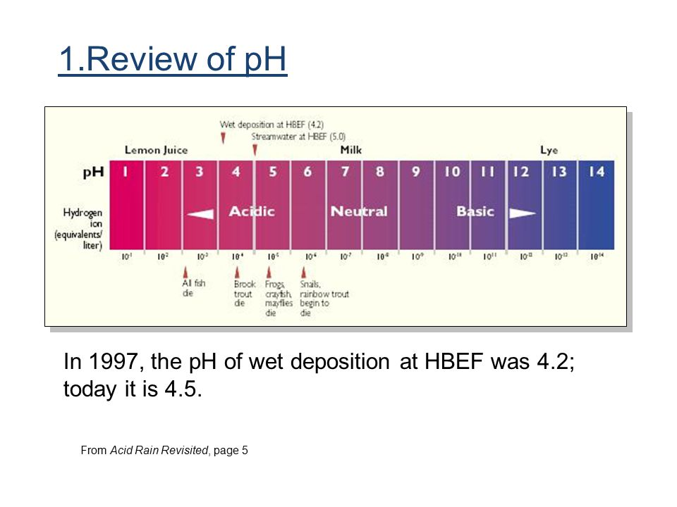 1.Review of pH In 1997, the pH of wet deposition at HBEF was 4.2; today it is 4.5.