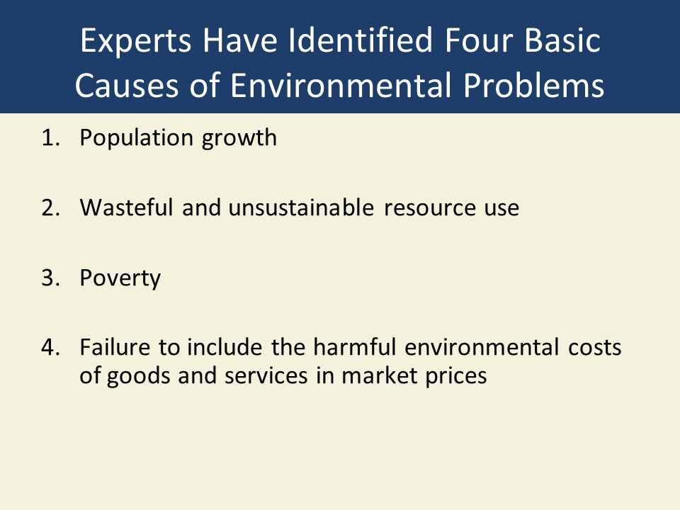 Experts Have Identified Four Basic Causes of Environmental Problems