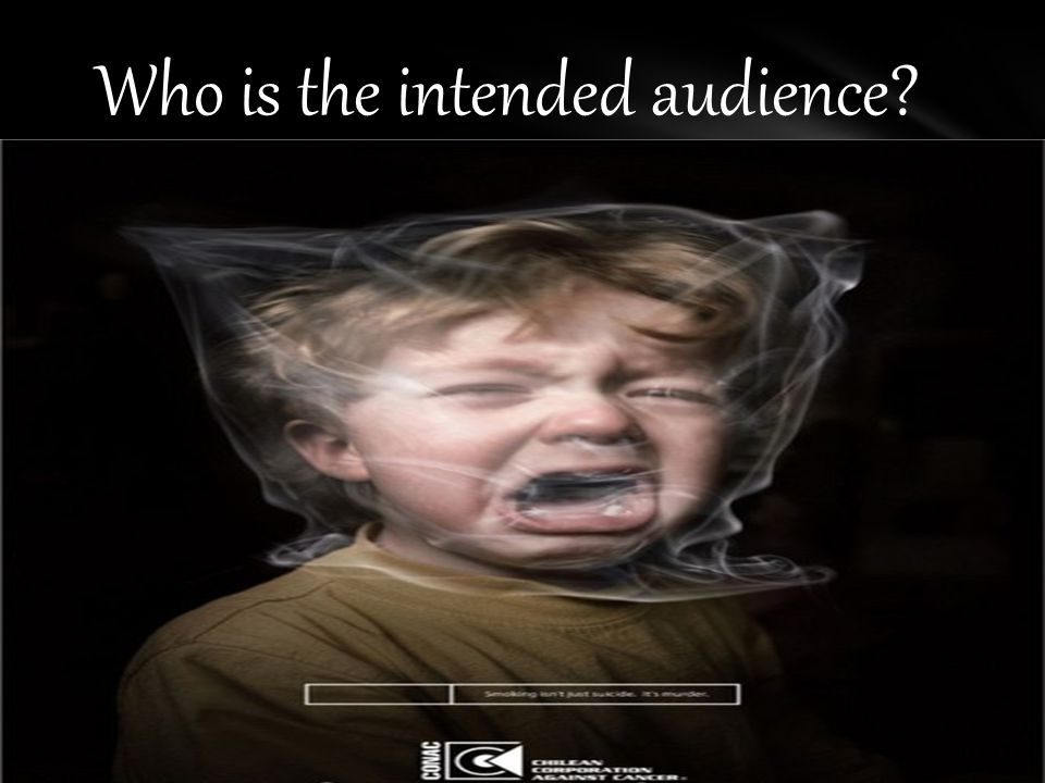 Who is the intended audience