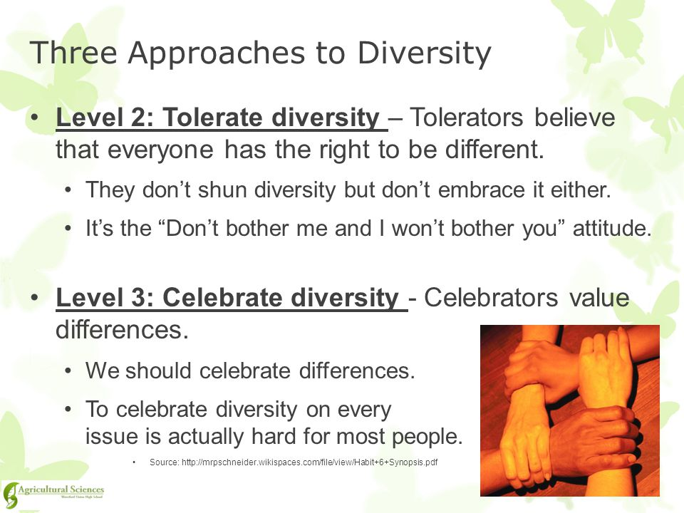 Three Approaches to Diversity
