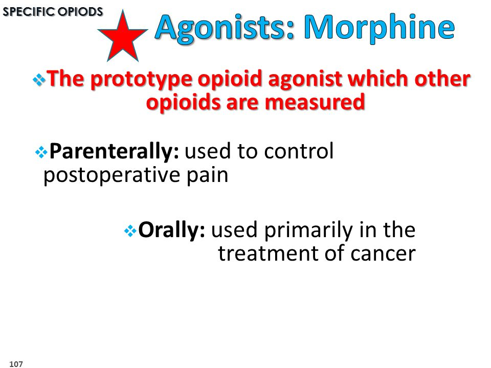 The prototype opioid agonist which other opioids are measured