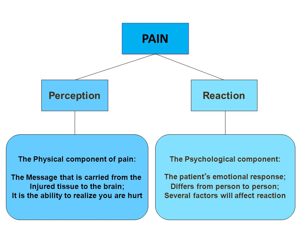 PAIN Perception Reaction The Physical component of pain: