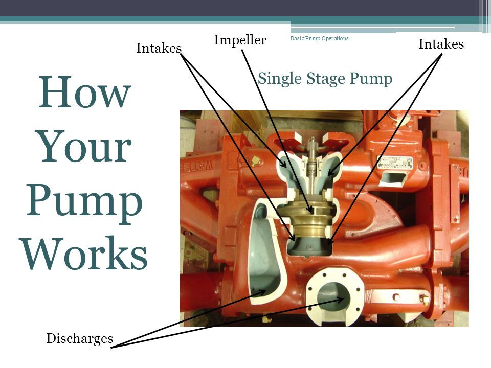 How Your Pump Works Single Stage Pump Impeller Intakes Intakes