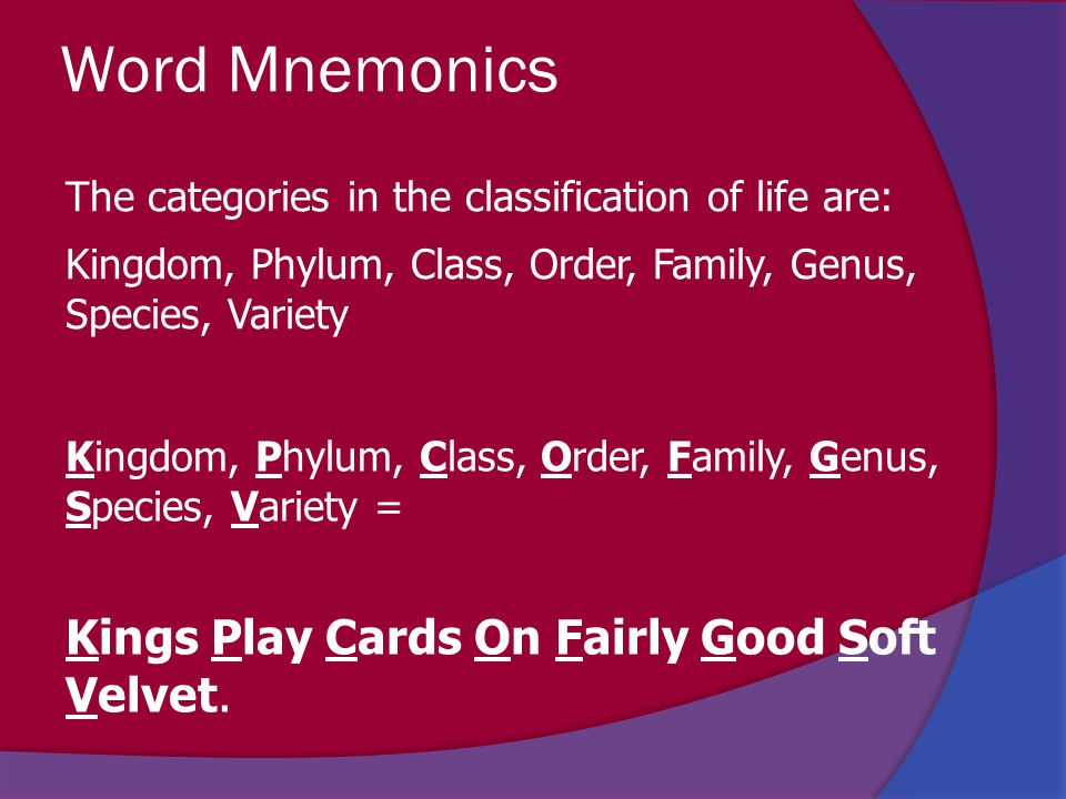 Word Mnemonics Kings Play Cards On Fairly Good Soft Velvet.