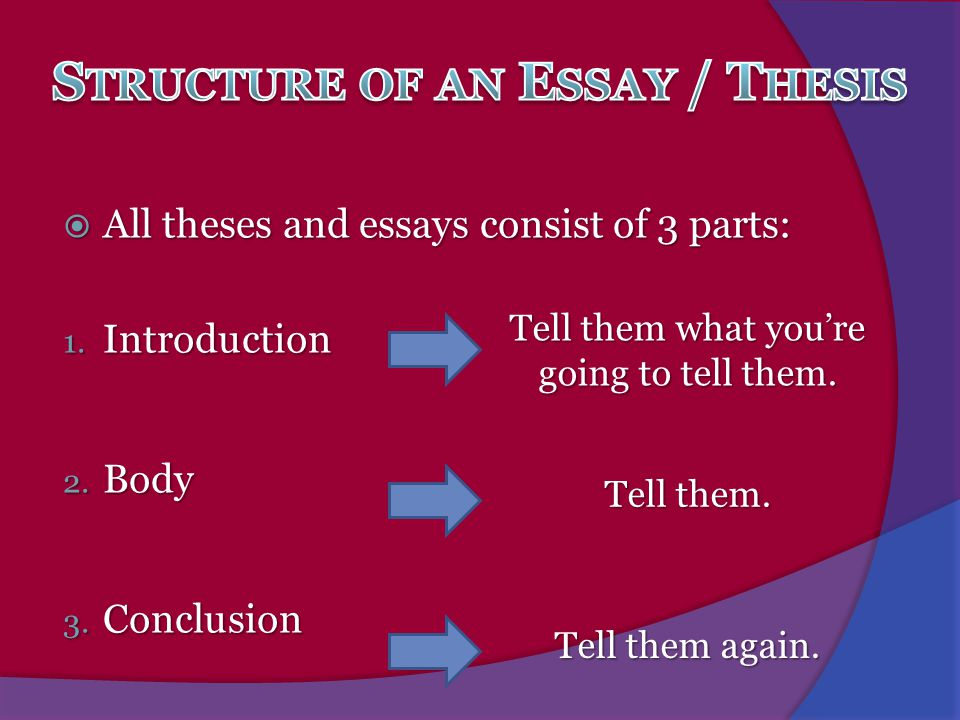 Structure of an Essay / Thesis