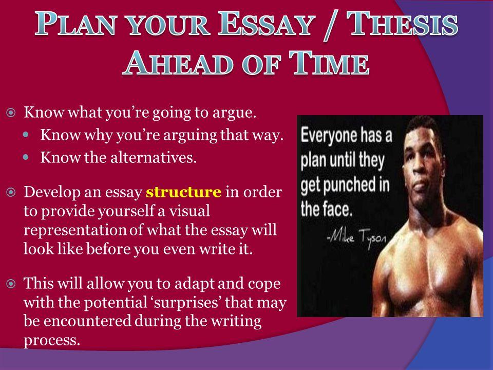 Plan your Essay / Thesis Ahead of Time