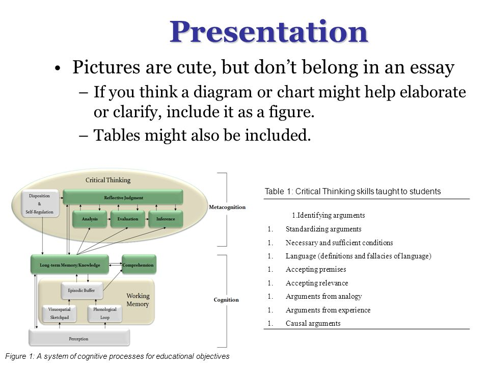 Presentation Pictures are cute, but don't belong in an essay