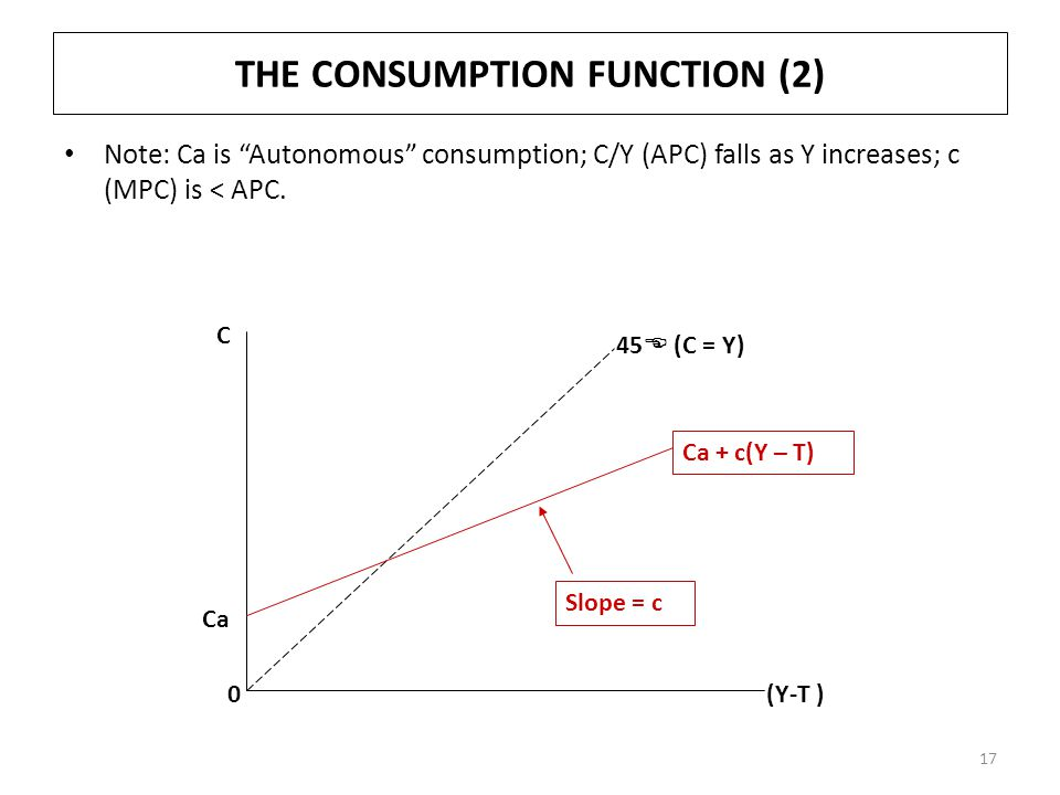 THE CONSUMPTION FUNCTION (2)